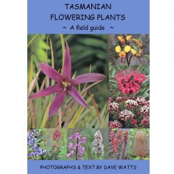 Tasmania's Flowering Plants
