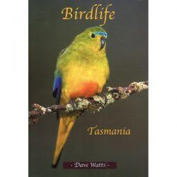 Birdlife Tasmania - Dave Watts