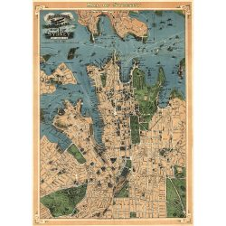Robinson's Aeroplane Map of Sydney